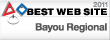 Best Website Award 2011